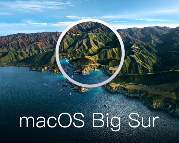 macOS Install/Restore 32GB USB 3.0 Stick - 11.1 Big Sur